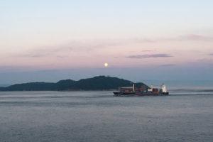 ダイヤモンドプリンセスから見た船と日本