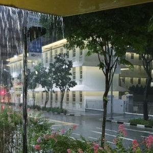 シンガポールスコール